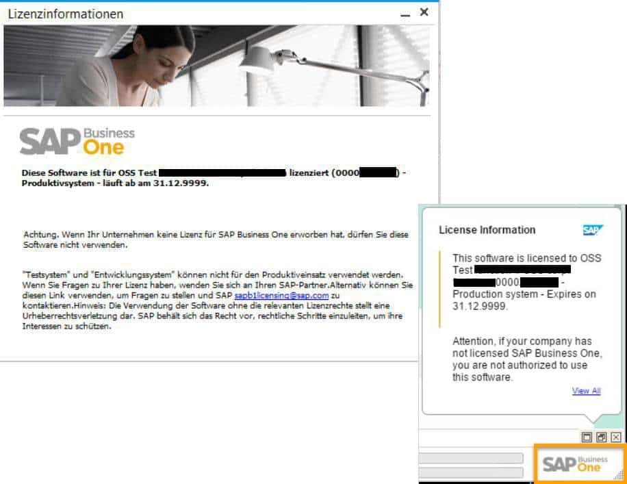 SAP Business One Version 9.3 - Administration - Anpassung der Lizenzstruktur